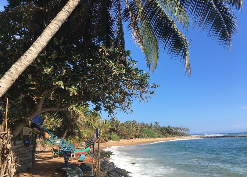 Beautiful beach in Sri Lanka - tropical beach Mirissa